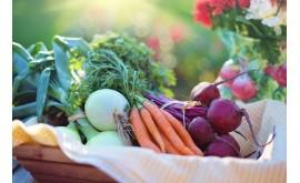 В Бурятии обнаружили овощи с нитратами