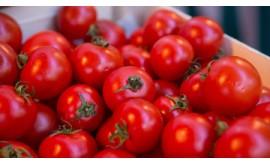 В сельхозпродукции из Турции превышены нитраты, нитриты и пестициды